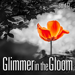 Glimmer in the Gloom | Sound Ideas | Sound Effects Libraries
