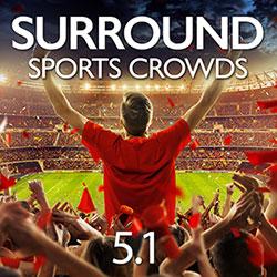 cricket stadium sound effects free download