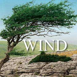 Wind Blowing Sound Effects | Sound Effects Libraries
